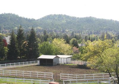 DeVito Equestrian Center pasture-image-3