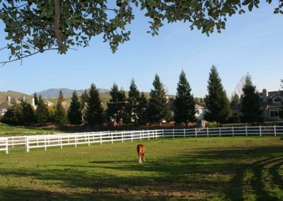 DeVito Equestrian Center pasture-image-7