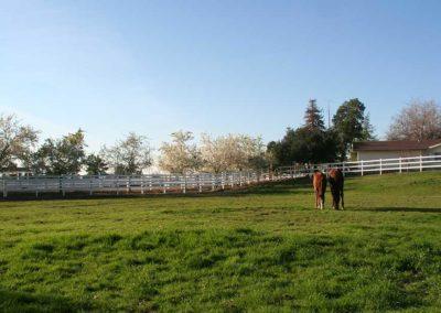 Pasture Space