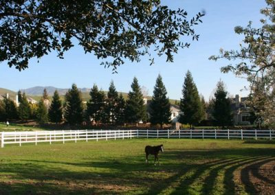 One of our turnout pastures
