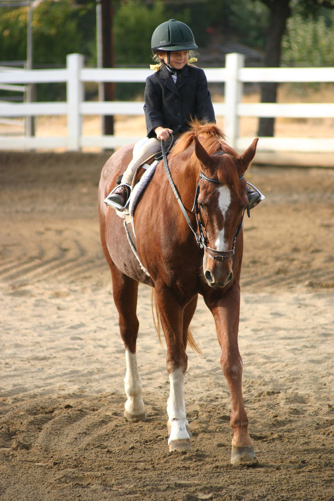 Horse riding lessons coupons
