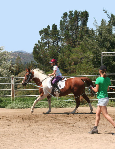 Cantering in a Riding Lesson