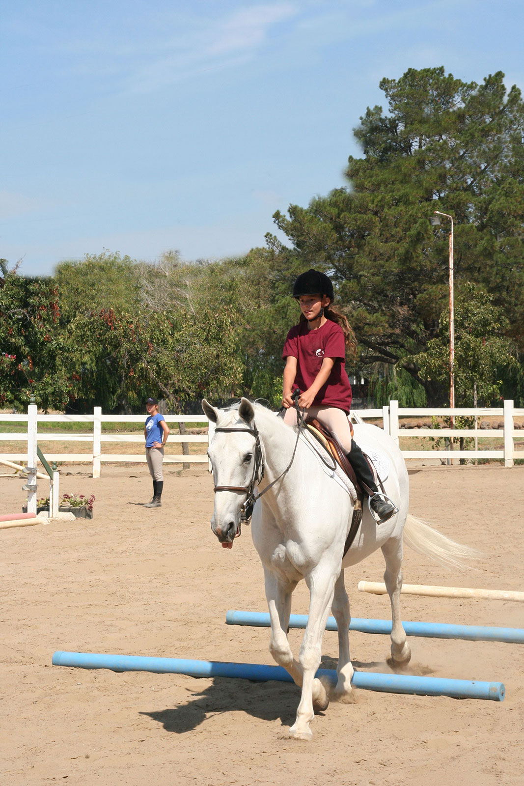 Trotting over Poles