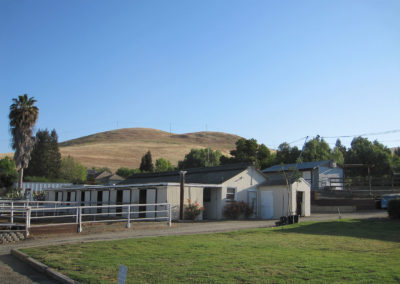 Stalls with  All- Weather Paddocks