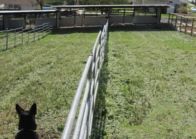 Top view of our Double Stalls with Paddocks