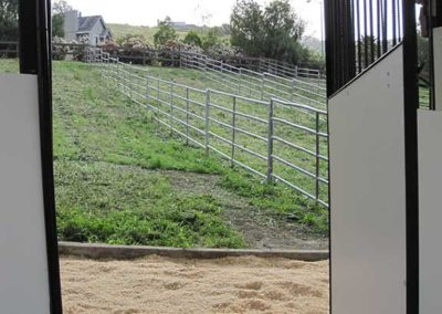 Peeking in the Double Stalls with Paddocks