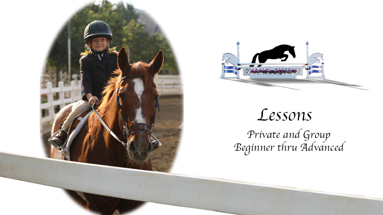 Horseback-Riging-Lessons-2